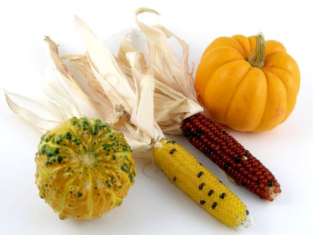 Harvest medley - Indian corn, pumpkin, gourd photo