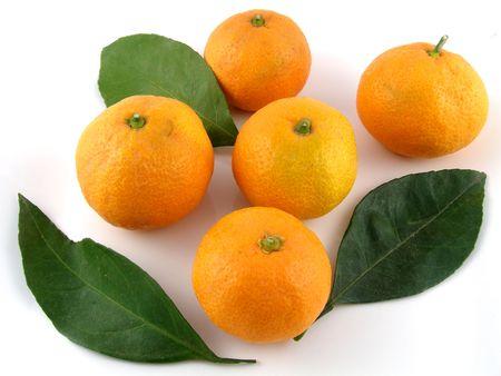 mandarins: Satsuma mandarins