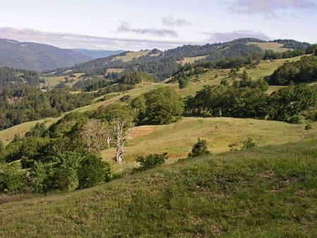 Rolling hills off State Route 299, Humboldt County, California Stock Photo - 301454