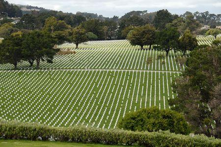 Rijen van headstones in een militaire begraafplaats
