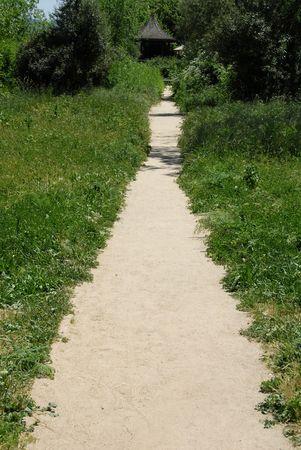 Foliage-lined path, Mission San Juan Bautista, San Juan Bautista, California