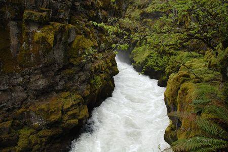 Rogue River ravine near Crater Lake, Oregon Stock fotó