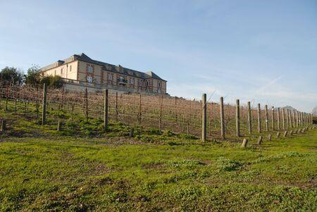 Vineyard and chateau, Napa, California