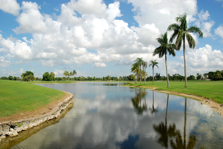 Palm trees reflected in a canal at a golf course, Miami, Florida 写真素材