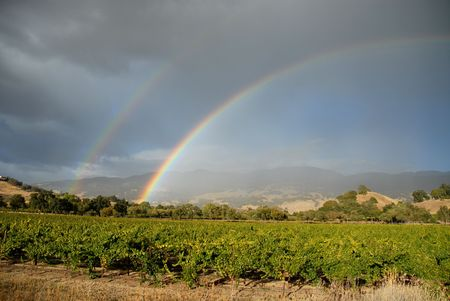 Double rainbow over California vineyards, Mendocino County, California