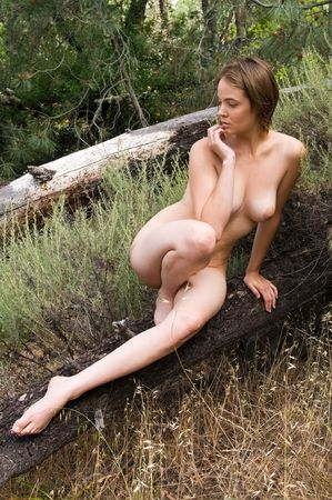 Beautiful young brown haired woman sitting naked in the woods Imagens