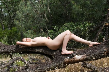 Beautiful young brown haired woman sunbathing naked in the woods Stock Photo - 4984430