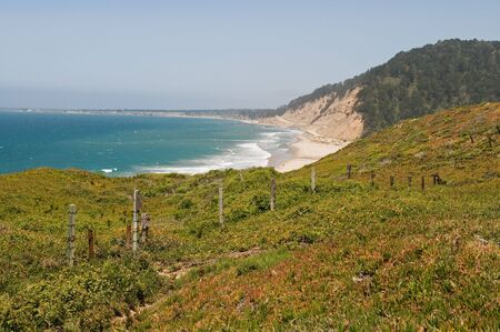 davenport: Pacific coast, Big Basin Redwoods State Park, Davenport, California