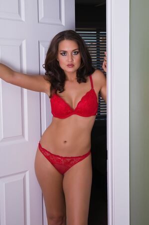 Beautiful young brunette in red bra and panties photo