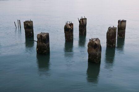 Worn concrete posts in San Francisco Bay, California