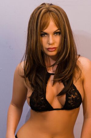 undergarment: Beautiful brunette dressed in black lingerie