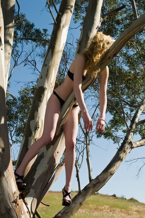 Slender blonde in lingerie suspended in a tree photo