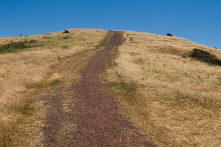 Trail up a steep hill, Coyote Hills Regional Park, Fremont, California Stock Photo - 7056250