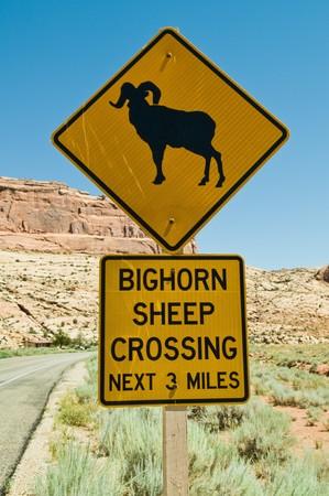 sheep warning: Bighorn Sheep Crossing road sign, Arches National Park, Moab, Utah Stock Photo