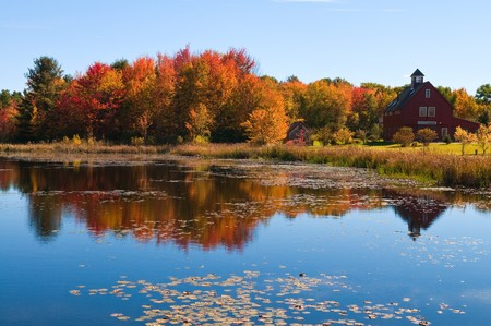 Autumn colors reflected in a pond near Dunbarton, New Hampshire 스톡 콘텐츠