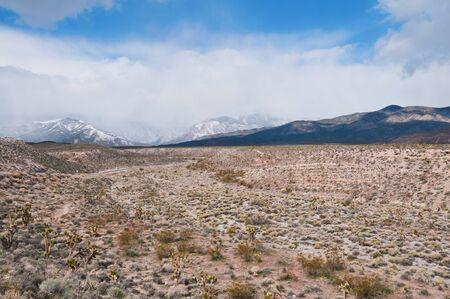 kyle: Snowy mountains and desert, Kyle Canyon, Nevada Stock Photo