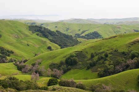 Rolling Hills and the Pacific Coast near Templeton, California Stock Photo - 9391568