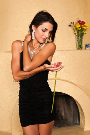 Beautiful Czech woman in a little black dress Standard-Bild