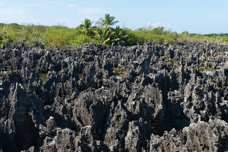 Limestone formations in Hell, Grand Cayman