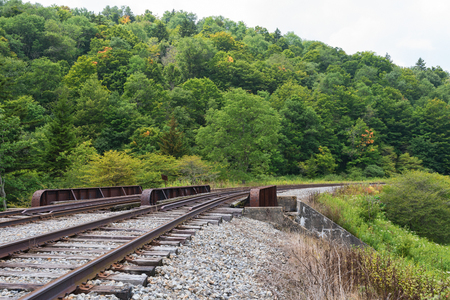 seneca: Railroad trestle in the hills, Spruce Knob-Seneca Rocks National Recreation Area, Cass, West Virginia