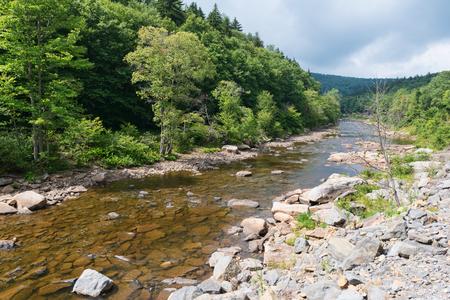 seneca: Shavers Fork of the Cheat River, Spruce Knob-Seneca Rocks National Recreation Area, Huttonsville, West Virginia