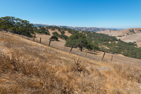 livermore: Dry parched hills, Livermore, California