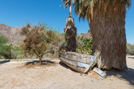 beached: Beached rowboat and palm trees, Zzyzx, California