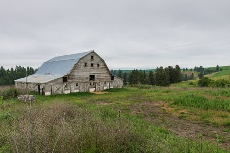 farm structures: Wooden barn among field and forest, Elberton, Washington
