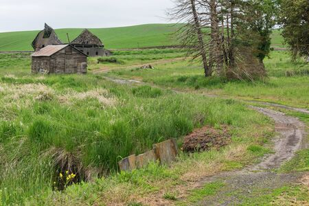 dilapidated: Dilapidated farm buildings, Palouse, Washington
