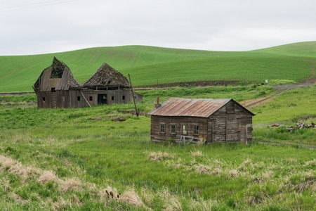 palouse: Dilapidated farm buildings, Palouse, Washington