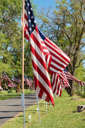 drapeaux am�ricain: Drapeaux am�ricains qui bordent la route du cimeti�re Colfax sur Memorial Day Weekend, Colfax, Washington