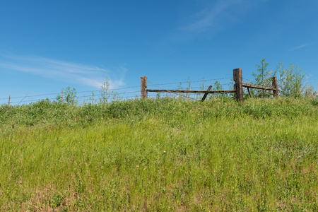 barbed wire fence: Barbed wire fence on a hill, Colfax, Washington