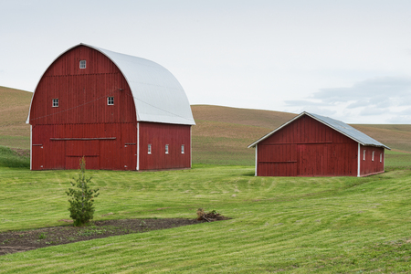 farm structures: Red barn and shed among wheat fields, Pullman, Washington Editorial