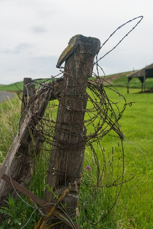palouse: Barbed wire wound around a fence post, Palouse, Washington