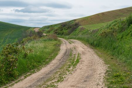 unpaved road: Dirt road through wheat fields, Pullman, Washington Stock Photo