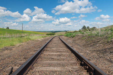 colfax: Railroad tracks through fields of canola, Colfax, Washington