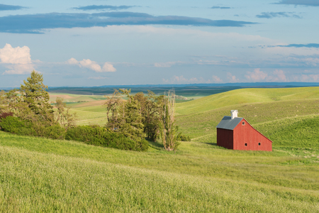 Barn and wheat fields at dusk, Moscow, Idaho