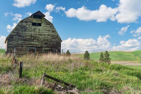 colfax: Old barn and wheat field, Colfax, Washington
