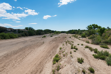parched: Dry Hassayampa River bed through Wickenburg, Arizona