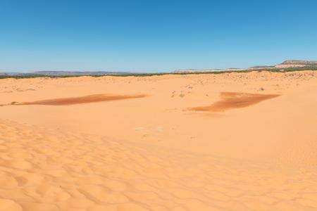 Coral Pink Sand Dunes State Park, Kanab, Utah