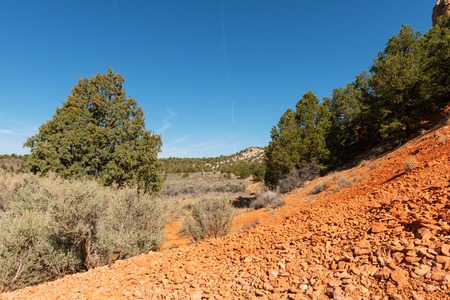 Red rock spires, Red Canyon, Dixie National Forest, Panguitch, Utah Imagens