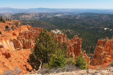 Ponderosa Canyon, Bryce Canyon National Park, Utah 免版税图像