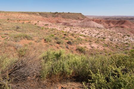 Painted Desert from Tiponi Point, Petrified Forest National Park, Arizona