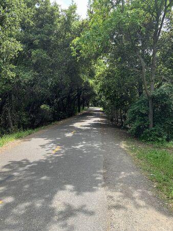 Stevens Creek Trail through suburban wilderness, Mountain View, California Banque d'images