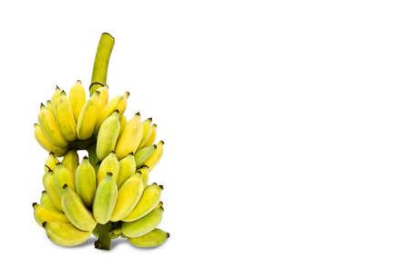 Set of Bananas Stock Photo