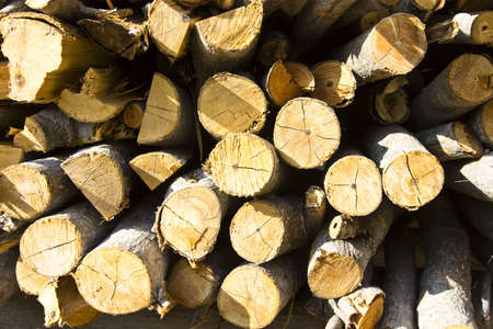 A pile of fire wood