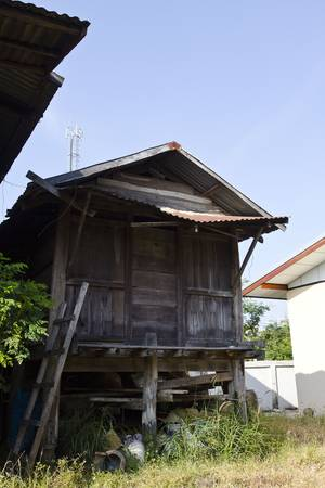 Thailand Dec 2011: The rice