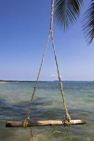 The swing hanging on the coconut tree over the beach  at  Koh Mak, Trat, Thailand