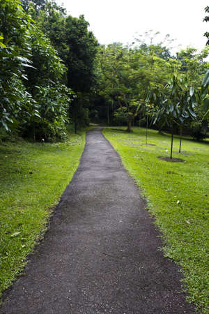walkway on the Mount Faber park, Singapore photo