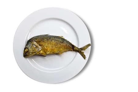 Fry tuna fish on white plate